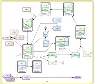 CellDesigner UML